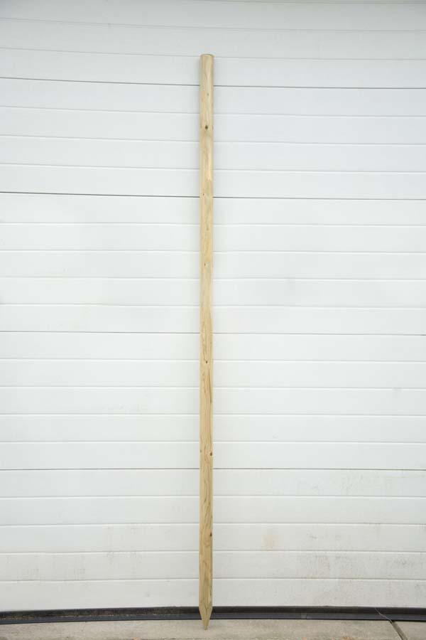 Boompaal 2,5m Hoog En 6cm Dik